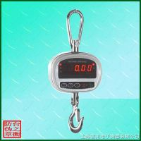 Small rang digital hanging scale