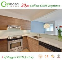 20yrs kitchen cabinet OEM exprience Eco-friendly Acrylic&Melamine Kitchen Cabinet