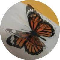 3D Pop Up Sticker thumbnail image