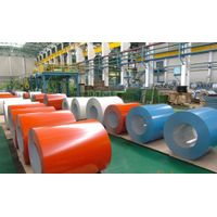 Prepainted galvanized steel sheet coil / Colored galvanized steel sheet coil