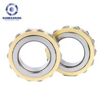 RN206 Cylindrical Roller Bearing 3053.516mm Single Row SUNBEARING thumbnail image