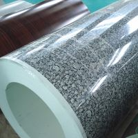 Wall Covering Color Coated Roofing Sheet; Prepainted Steel Coil