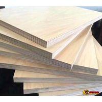 Eucalyptus beech birch etc hard wood marine board