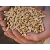 Sell Offer Wood Pellets 50% Discount thumbnail image