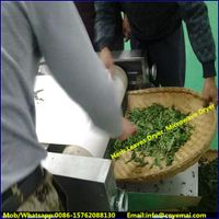 herb dryer,tunnel herb drying machine,stevia leaf dryer,thyme dryer