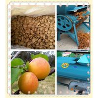 New Design Apricot Flesh Peeling Machine