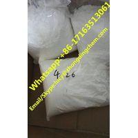 factory supply u48800 / u-48800 / U48800 / u-48800 powder 99%min, white powder