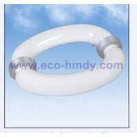 Oval Induction Lamps(40W-300W)