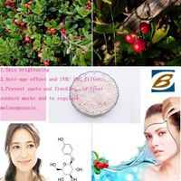 Factory Supply Skin whitening Alpha Arbutin Extract