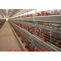 Poultry layer cages professional design