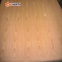 Factory direct 12202440 beech wood veneer fancy plywood with best price for south america thumbnail image