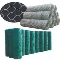 Hexagonal chicken wire mesh,chain link fence,stainless steel wire mesh,black wire,common nail