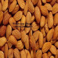 Almond Nuts thumbnail image