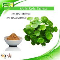 Factory supply Gotu Kola Extract