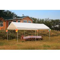 10'x20' Portable Carport,Canopy in Garden