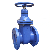 ANSI Cast Iron Metal Seated Sluice Valve