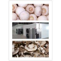 white button mushroom dehydrator