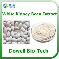 100% Pure Natural White Kidney Bean Extract Powder phaseolin 1% 2% For losing weight