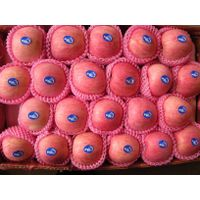 chinese apple thumbnail image
