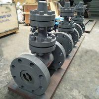 API DIN GOST Standard Cast Steel Forged Steel Seat Gate Valve