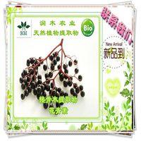 Elderberry P.E