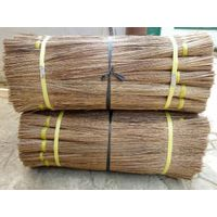 Dry broom stick from coconut tree