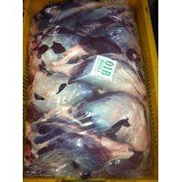 Halal Frozen Buffalo Khasila Meat