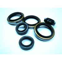 TC Oil Seal /NBR Oil Seal /Viton Oil Seal