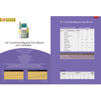 IC Card Intelligence gas Meter II