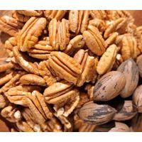 Pecan Nuts, Pecan Nut Kernels Grade A thumbnail image