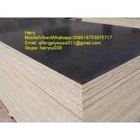 film faced plywod waterproof plywood