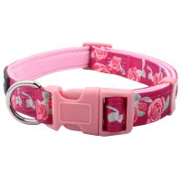 Factory New Product Custom Sublimation Polyester Dog Collars With Padded