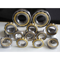 good quality Cylindrical Roller Bearings NUP318 NJ318 NU418 NJ418 Serise for sale