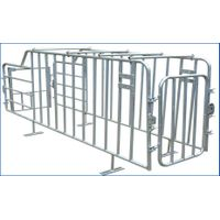 Gestation stall for pig