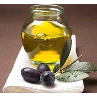 Olive Leaf P.E.