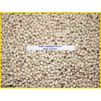 Vietnam White Pepper 630gl