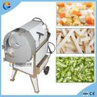 300-600kg/h Automatic Root Vegetable Cutting Machine