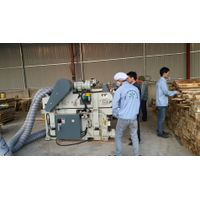 Viet Nam Acacia saw timber
