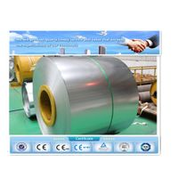 Ral color ppgi prepainted steel sheets in coil