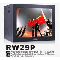 CCTV Monitor RW29P
