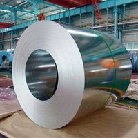 Galvanized Steel Plate & Coil
