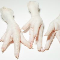 Frozen chicken paws and Mid joint Wings thumbnail image