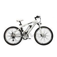 Lithium Battery e-bicycle