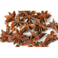 Star Anise - Scientifically proven health and wellness benefits thumbnail image