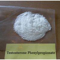 Testosterone Phenylpropionate 99% purity powder