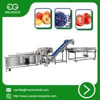 Air bubble washing machine Factory Price Fruit washing machine thumbnail image