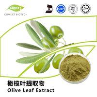 Oleuropein 10%~80% Olive Leaf Extract
