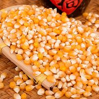 Yellow Dry Corn For Animal or Human Consumption thumbnail image