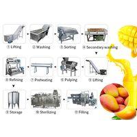 Mango Juice Pulp Production Line | Mango Pulp Juicer Machine