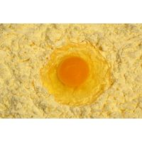 Egg yolk powder flavoring for food industry